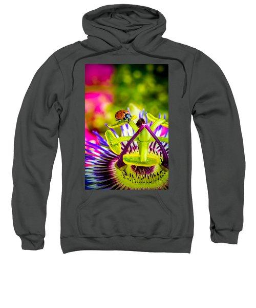 Too Much Of Heaven Sweatshirt