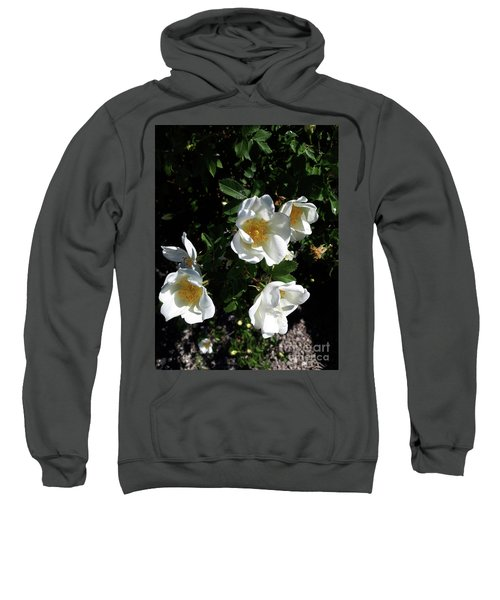 Too Thorny To Pick But Lovely All The Same Sweatshirt