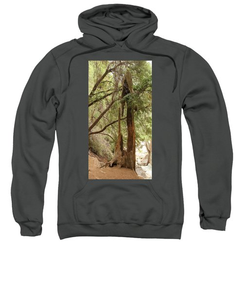 Totem Made By Nature Sweatshirt