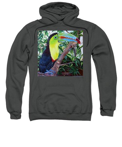 Toucan Portrait Sweatshirt