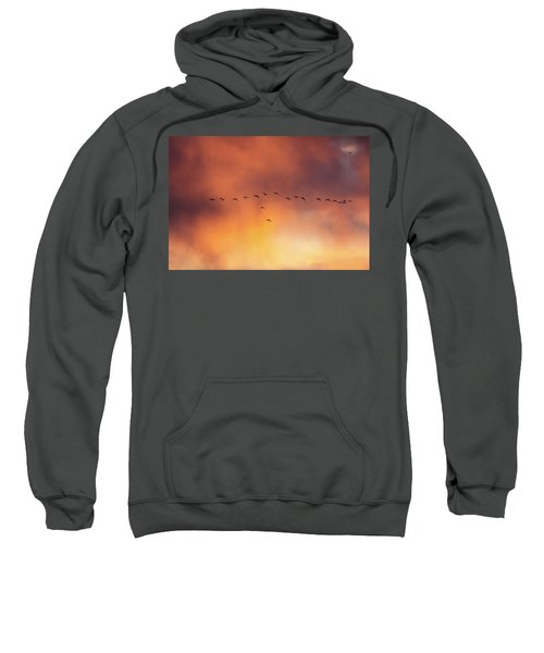 Towards The Sun Sweatshirt