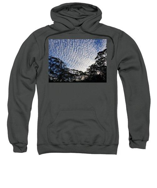 Towen Mountain  Sweatshirt