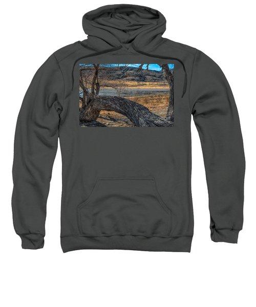 Tree At Elizabeth Lake Sweatshirt