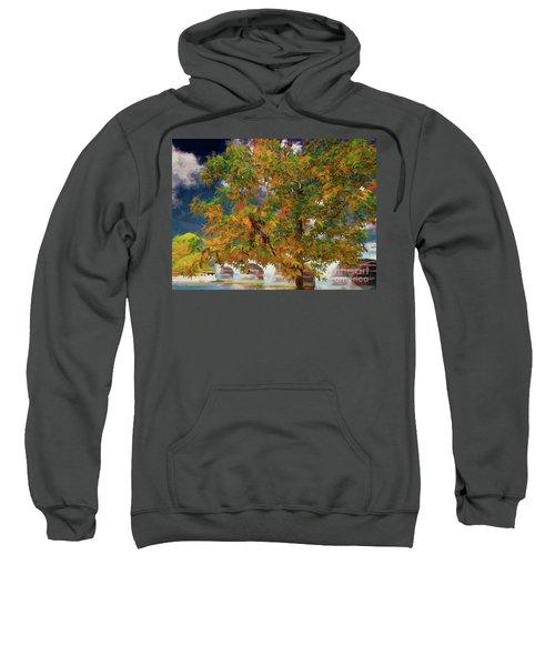 Tree By The Bridge Sweatshirt