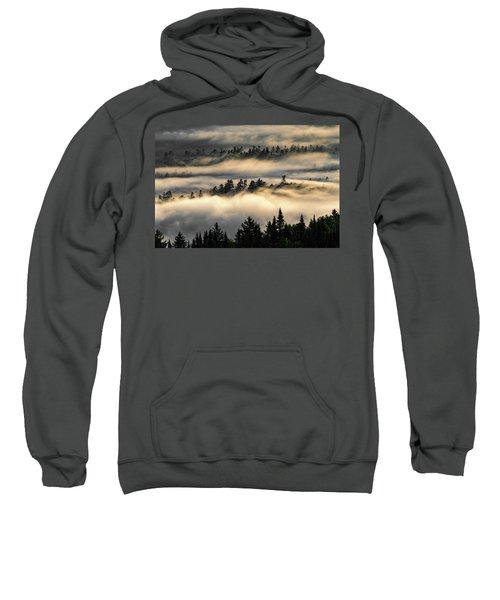 Trees In The Clouds Sweatshirt
