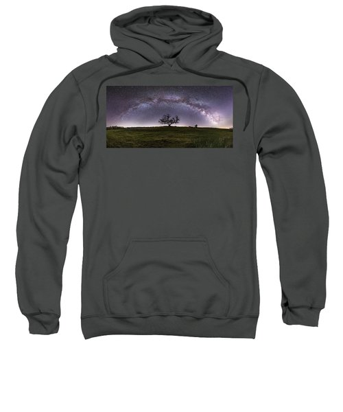 Tree Of Serenity  Sweatshirt