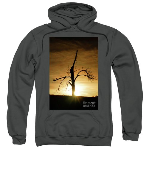 Tree Silhouette At Sundown Sweatshirt