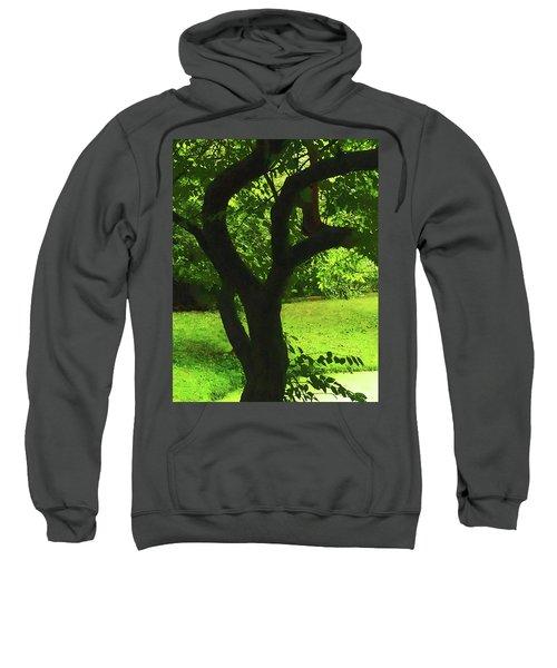 Tree Trunk Green Sweatshirt