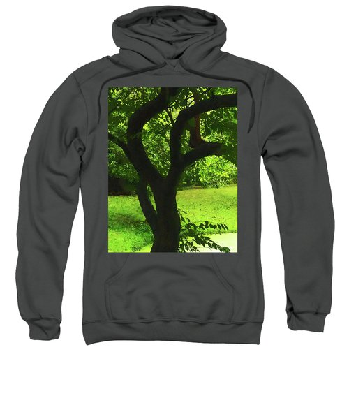 Tree Trunk Green Sweatshirt