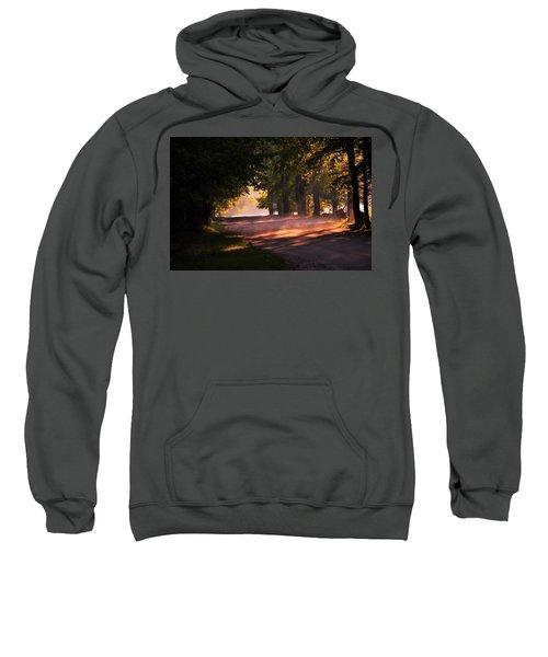 Tree Tunnel Sweatshirt