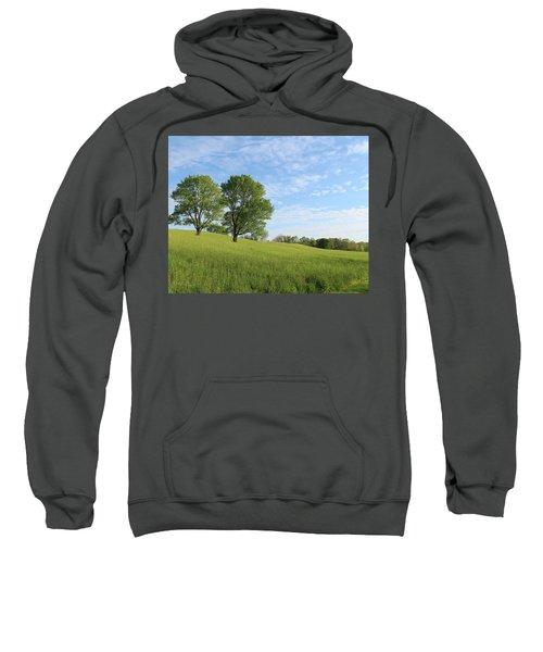 Summer Trees 3 Sweatshirt