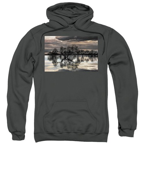Trees Dream Sweatshirt
