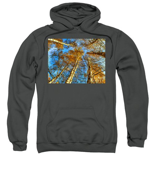 Trees Grow To The Sky Paint Sweatshirt