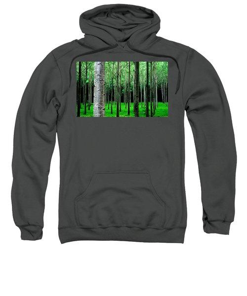 Trees In Rows Sweatshirt