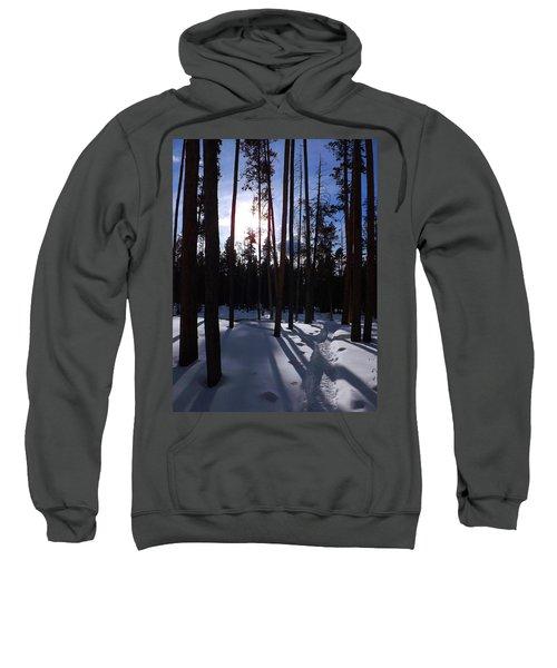 Trees In Winter Sweatshirt