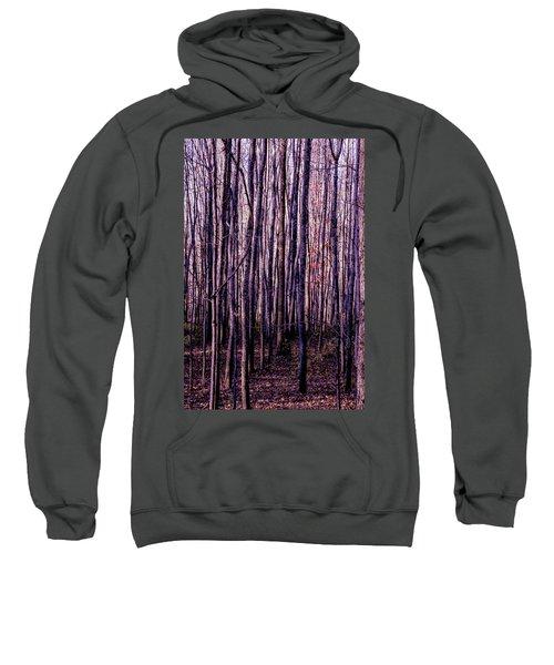 Treez Magenta Sweatshirt