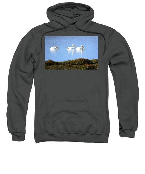 Tres Pelicanos Blancos Sweatshirt