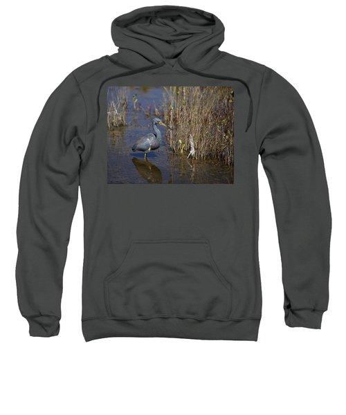 Tricolored Heron Wading Sweatshirt