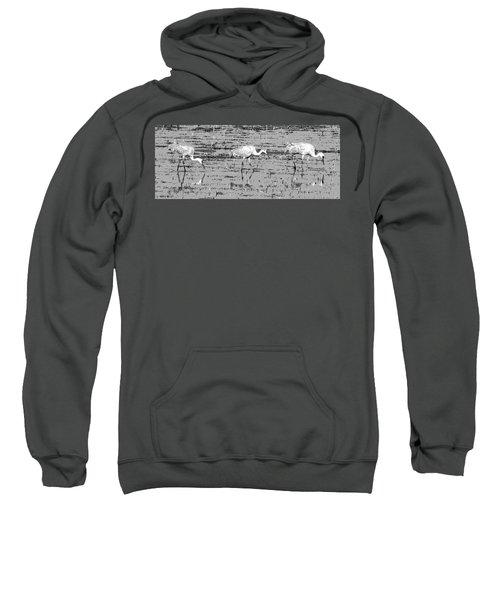 Trio Of Cranes Sweatshirt