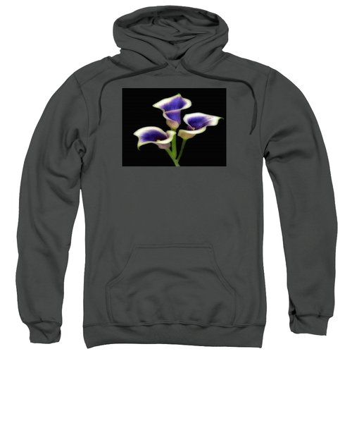 Triple Royal Floral Sweatshirt