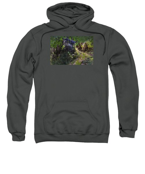 Trolley Bus Into The Jungle Sweatshirt