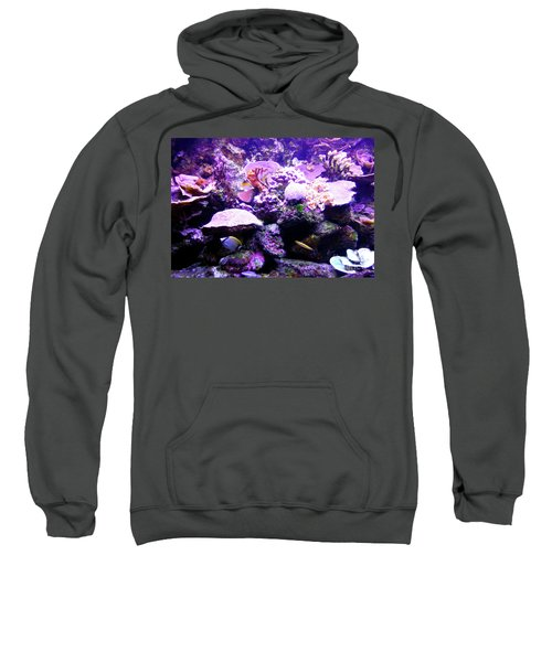 Sweatshirt featuring the photograph Tropical Aquarium by Francesca Mackenney