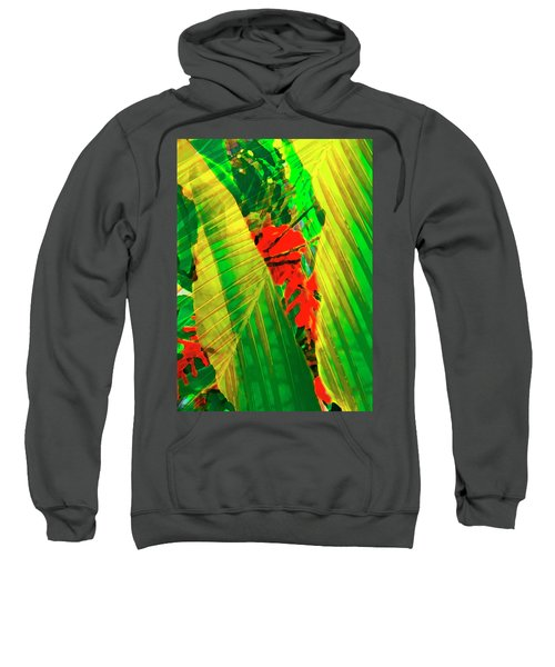 Tropical Fusion Sweatshirt