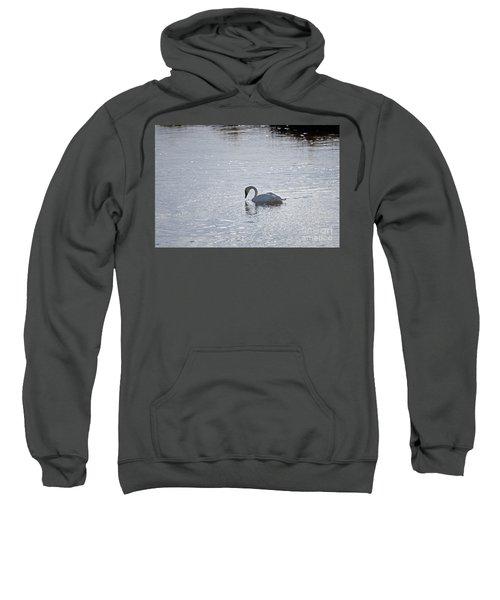 Trumpeter Swan Yellowstone Sweatshirt