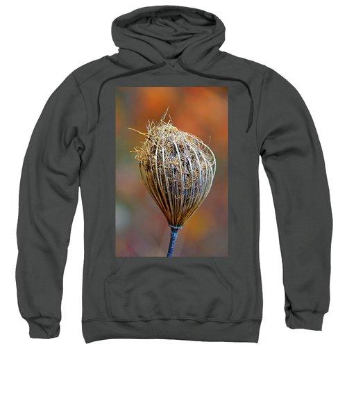 Tucked In For Winter Sweatshirt