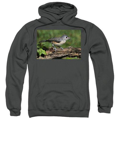 Tufted Titmouse On Tree Branch Sweatshirt