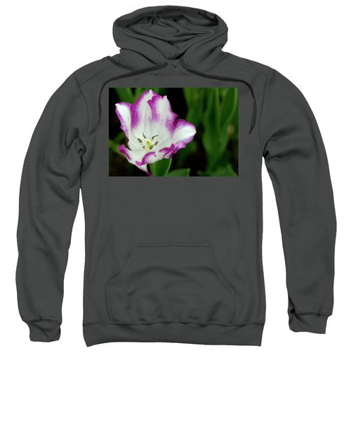 Tulip Flower Sweatshirt