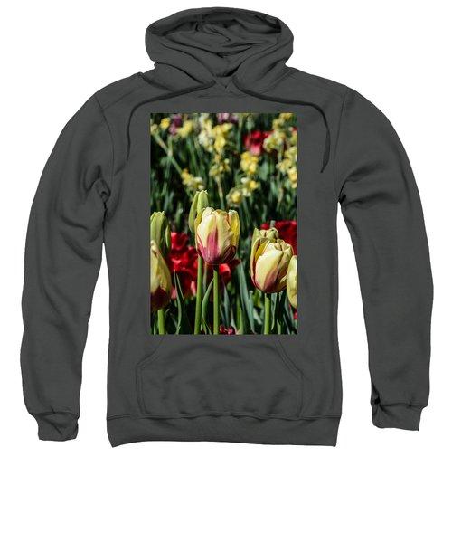 Tulip Garden Sweatshirt
