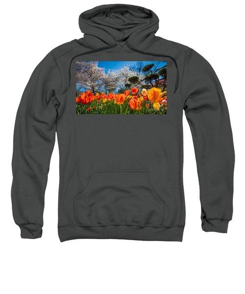Tulip Panorama Sweatshirt