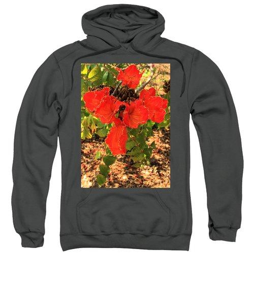 Tulip Tree Flowers Sweatshirt