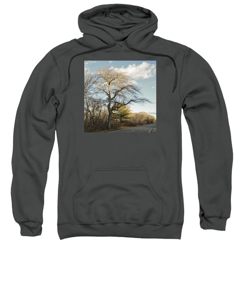 Tupelo Tree Sweatshirt