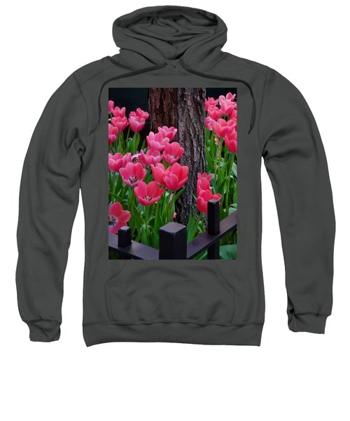 Tulips And Tree Sweatshirt by Mike Nellums