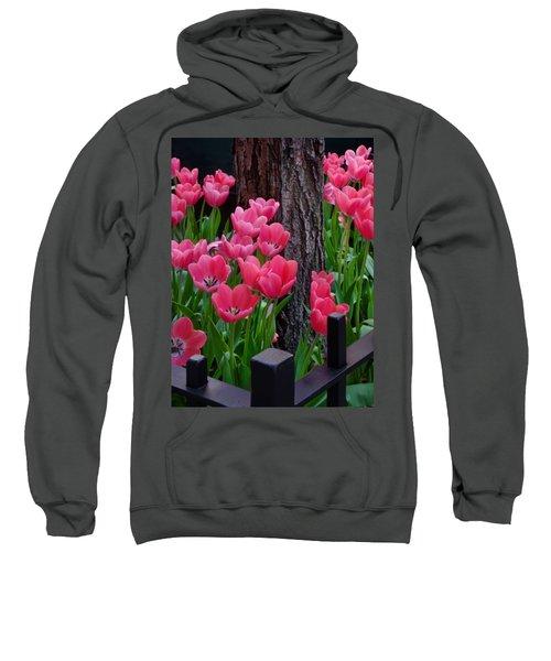 Tulips And Tree Sweatshirt