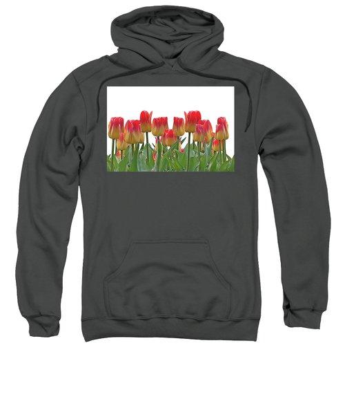 Tulips Sweatshirt