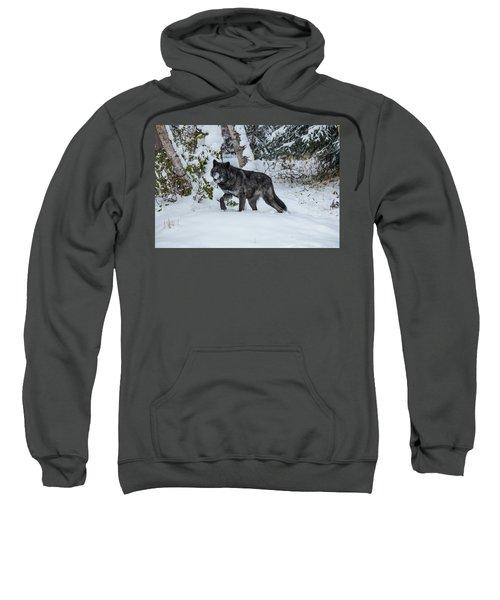 Tundra Wolf 6701 Sweatshirt