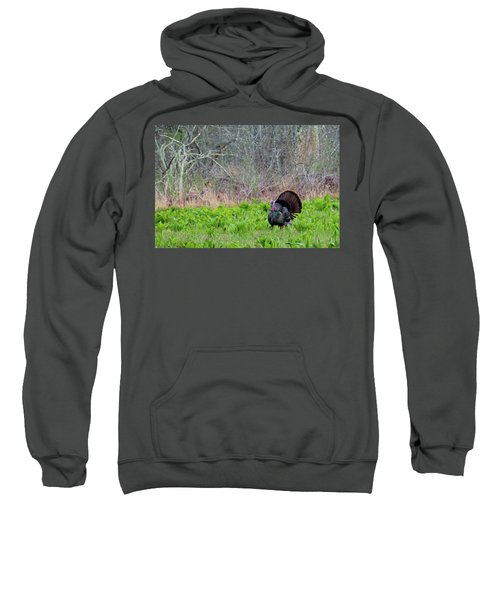 Sweatshirt featuring the photograph Turkey And Cabbage by Bill Wakeley