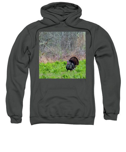 Sweatshirt featuring the photograph Turkey And Cabbage Square by Bill Wakeley
