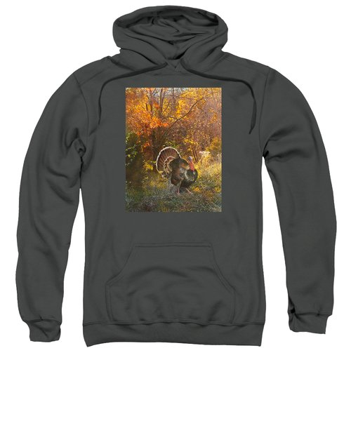 Turkey In The Woods Sweatshirt