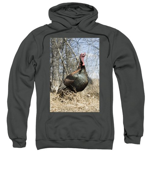 Turkey Tom Sweatshirt