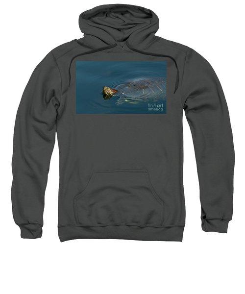Turtle Floating In Calm Waters Sweatshirt