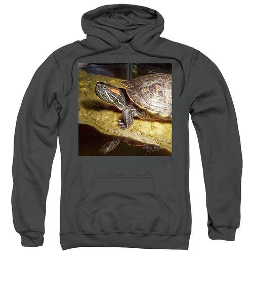 Turtle Reflections Sweatshirt