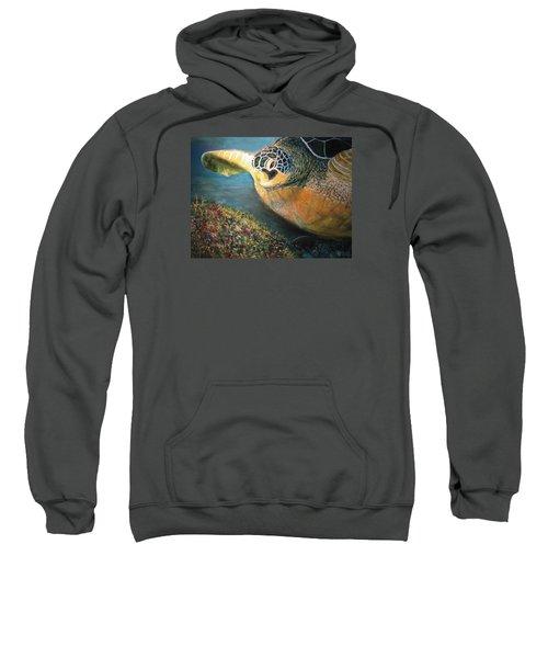 Turtle Run Sweatshirt