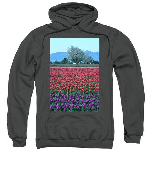 Twilight In Skagit Valley Sweatshirt