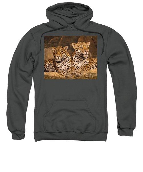 Twin Cheetahs Sweatshirt