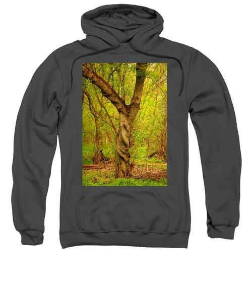Twisted Sweatshirt