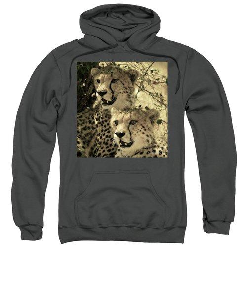 Two Cheetahs Sweatshirt